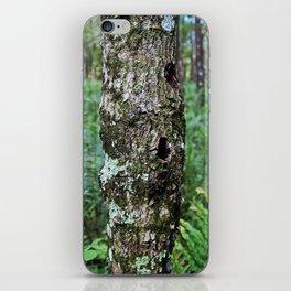 Shattered Valor iPhone Skin