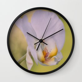 Orchid Dreams Wall Clock