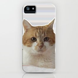 Red cat on a striped background. iPhone Case