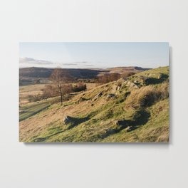 Trees on a hillside at sunset. Upper Padley, Derbyshire, UK. Metal Print