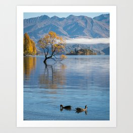 Out for a swim Art Print