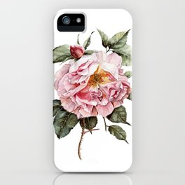 Wilting Pink Rose Watercolor iPhone Case