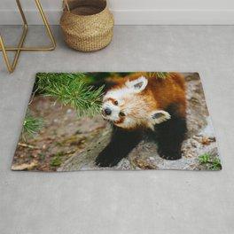 Little Red Panda Rug