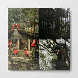 fushimi inari imagery // iv Metal Print