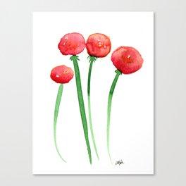 4 Ranunculus Canvas Print