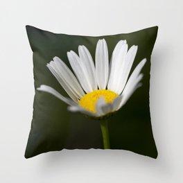 Shasta Daisy 2 Throw Pillow