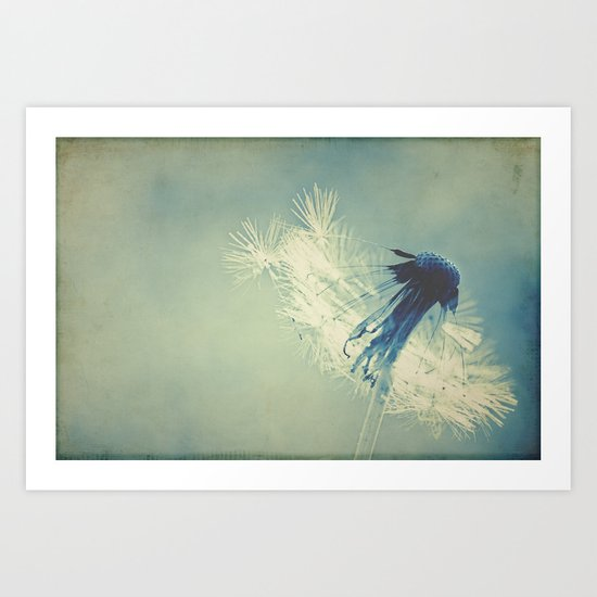 to live's to fly Art Print
