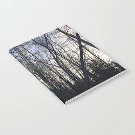 Birch Shadow Notebook