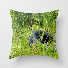 Old and New in Utah Throw Pillow