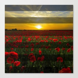 Sunset Red Flowers & Transparent Stripes Canvas Print