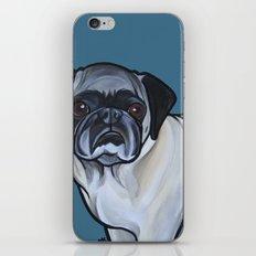 Murphy the pug iPhone & iPod Skin