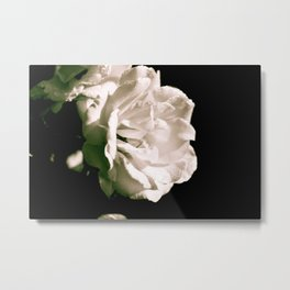 The way nature tempts us Metal Print
