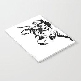 Follow the Herd #229 Notebook