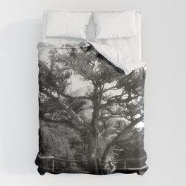 Halt Comforters