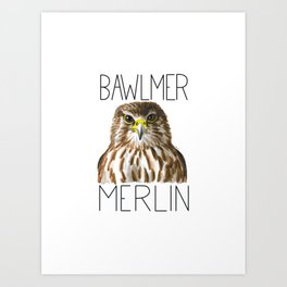 Bawlmer Merlin Art Print