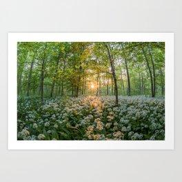 Bear's Garlic Forest Art Print