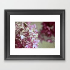 Hydrangeas No. 4 Framed Art Print