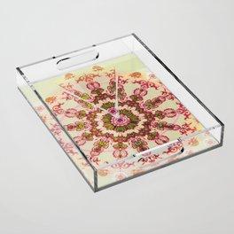 Rayonnant Acrylic Tray