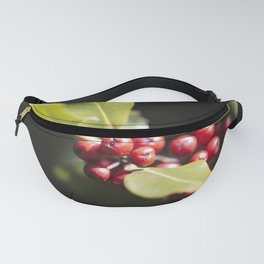 Boughs of Holly Fanny Pack