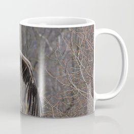 big griffon vulture flies in the sky Coffee Mug