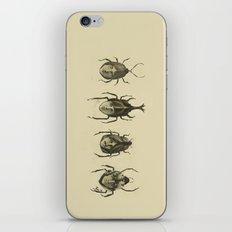 Beetle Morphology iPhone & iPod Skin