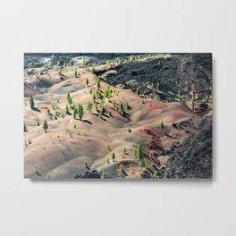 Painted Dunes Metal Print