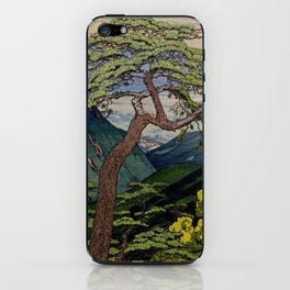 The Downwards Climbing iPhone Skin