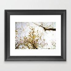 looking up . iv Framed Art Print