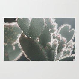 cactus hearts Rug