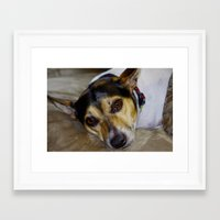 terrier Framed Art Prints featuring Terrier by Rick Kirby