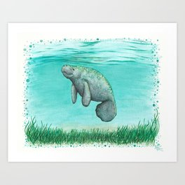 """""""Mossy Manatee"""" by Amber Marine ~ Watercolor & Ink Painting, (Copyright 2016) Art Print"""