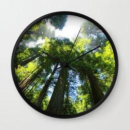 Sequoia Wall Clock