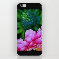 Seduction in a garden iPhone & iPod Skin