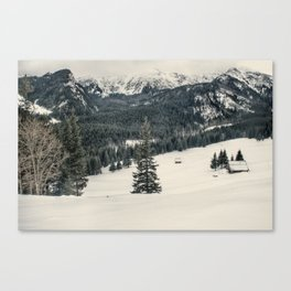 Mountains in the wintertime Canvas Print