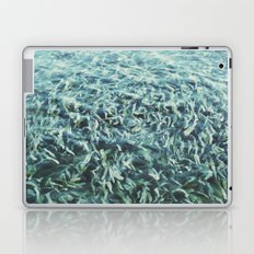 Water Garden Laptop & iPad Skin
