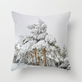 """""""Ghost forest"""". Square.  After the snowstorm Throw Pillow"""