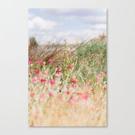Aquarelle dreams of nature Canvas Print