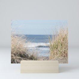 The Beach Beckons    Path To Ocean Shore Mini Art Print