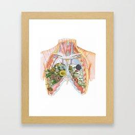 Lung Garden Framed Art Print