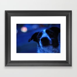 My Best Friend Framed Art Print