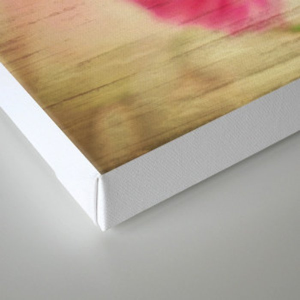 wooden ranunculus Canvas Print