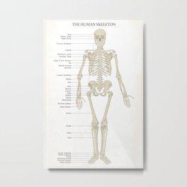 Skeleton - White Metal Print
