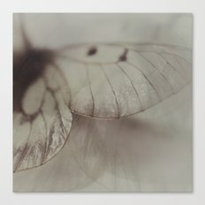 Papery Canvas Print