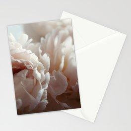 Joyful Unfolding Stationery Cards