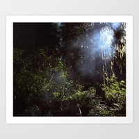 Smoke in the Forest Art Print
