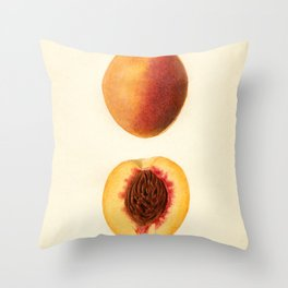 Vintage Illustration of a Sliced Peach Throw Pillow