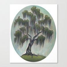 Sunny Live Oak Canvas Print