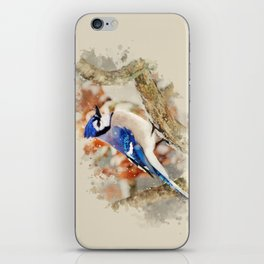 Watercolor Blue Jay Art iPhone Skin