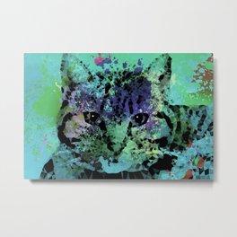 Cat 655 Metal Print