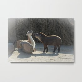 Love is... overcoming your differences Metal Print